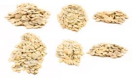 изолированные семена тыквы Стоковое фото RF