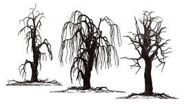 Изолированные страшные деревья смерти Стоковые Изображения
