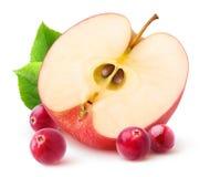 Изолированные яблоко и клюквы Стоковые Изображения