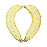 Изолированный банан 2 кусков в форме сердца Стоковые Изображения