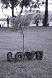 изолированный вектор варианта вала знака предмета влюбленности логоса Стоковое фото RF