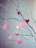 изолированный вектор варианта вала знака предмета влюбленности логоса Стоковое Фото