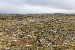 Изолированный вулканический ландшафт на полуострове snaefellsnes Стоковые Фото