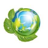 Изолированный глобус земли в экологической концепции Иллюстрация вектора