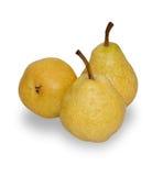 изолированный желтый цвет груш 3 Стоковые Изображения RF