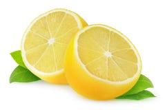 Изолированный лимон отрезка стоковая фотография