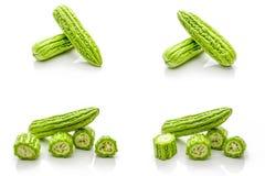 Изолированный комплект зеленой горькой тыквы на белой предпосылке Стоковое Фото
