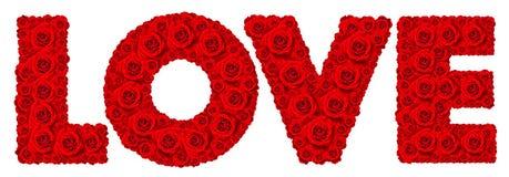 Изолированный комплект цветка красной розы в слове ВЛЮБЛЕННОСТИ Стоковое фото RF