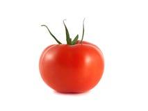 Изолированный красный зрелый томат на белой предпосылке Стоковое фото RF