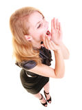Изолированный кричать buisnesswoman женщины белокурый Стоковые Фото
