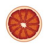 Изолированный круг сочного апельсина красного цвета кровопролитного на белой предпосылке Реалистическое покрашенное вокруг куска иллюстрация штока