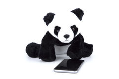 Изолированный медведь панды с человека деятельностью при ежедневно на белизне стоковое изображение rf