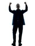 Изолированный праздновать бизнесмена счастливый Стоковое фото RF