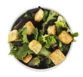 изолированный салат стоковое фото rf