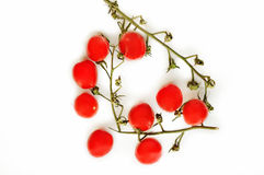 Изолированный томат вишни Стоковое Изображение RF