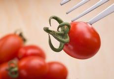 Изолированный томат Стоковое Изображение RF