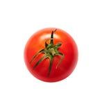 Изолированный томат Стоковые Фото