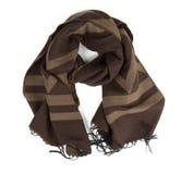 изолированный шарф Стоковая Фотография