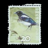 Изолированный штемпель почтового сбора Стоковое Изображение RF