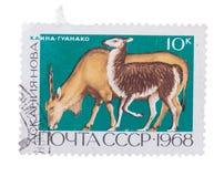 Изолированный штемпель почтового сбора Стоковая Фотография RF