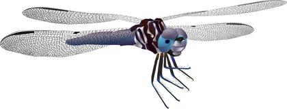 Изолированный Dragonfly вектора Стоковые Изображения RF