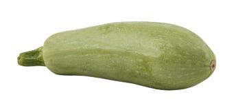 изолированный zucchini Стоковые Фотографии RF