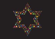 Израильский флористический флаг Звезда Давида Стоковое Фото