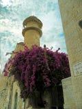 Израиль, город Иерусалима Стоковые Фото