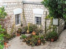 Израиль Двор и цветки Стоковая Фотография RF