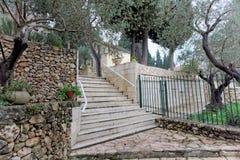 Израиль Иерусалим - 14-ое февраля 2017 Территория монастыря Gorny Стоковое фото RF