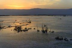 Израиль мертвое море рассвет Стоковые Фотографии RF