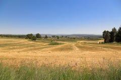 Израиль. панорамный взгляд стоковое фото
