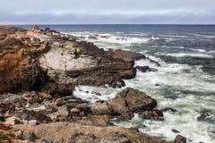 Изрезанное побережье и Тихий океан Калифорнии Стоковые Изображения RF