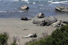 Изрезанное побережье 4 Стоковое фото RF