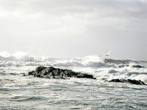 Изрезанное Тихоокеанское побережье Стоковые Фото