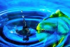 Изумительная абстрактная съемка выплеска падения воды около зеленых лист в воде Макрос снятый с селективным фокусом Стоковые Изображения