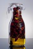 Изумительное душистое пряное домодельное настоянное оливковое масло chili Стоковое Изображение RF
