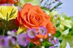 Изумительное лето цветков красит оранжевые розы и желтый цвет стоковые фотографии rf