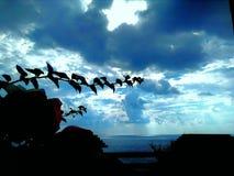 Изумительное небо в индюке осени Стоковое Изображение RF