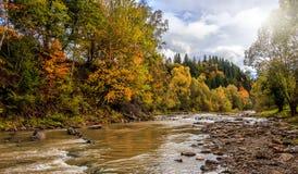 Изумительное утро на реке горы красочные деревья накаляя в солнечном свете стоковые фото
