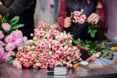 Изумительно красивый пинк и шампанское красят маленькие розы Стоковая Фотография