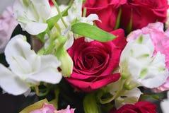 Изумительный букет красного цвета розы цветков стоковая фотография
