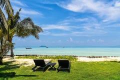 Изумительный взгляд красивого пляжа с пальмами, фаэтонами и tra Стоковые Фото