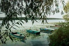 Изумительный взгляд на старых красочных деревянных шлюпках на солнечном озере на c Стоковые Фото