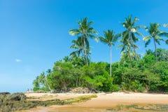 Изумительный взгляд пляжей около Itacare Стоковая Фотография