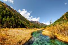 Изумительный взгляд Green River с кристаллической водой среди падения fields Стоковая Фотография