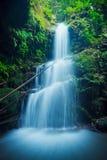 изумительный водопад Стоковая Фотография