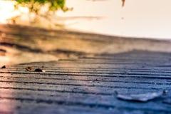 Изумительный восход солнца пляжа Стоковое фото RF