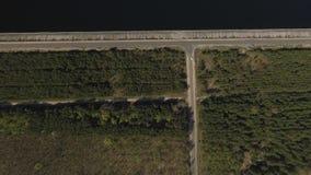 Изумительный зеленый лес на левой стороне, голубое озеро на праве, и длинная прямая дорога на середине Впечатляющая природа top сток-видео