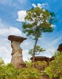 изумительный камень Стоковая Фотография RF